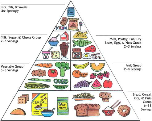 Myplate Controversy Pie Chart To Cure Obesity Mike Rucker Phd